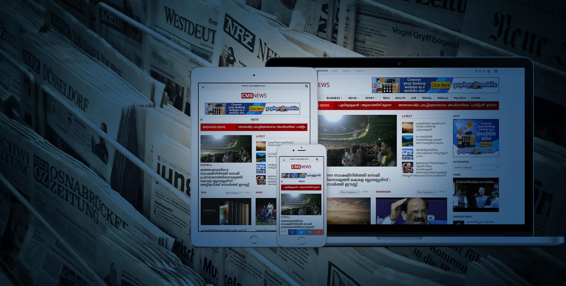 Low cost news portal website development